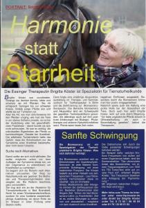 Artikel Der Reiter